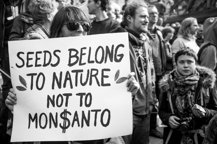 monsanto_demonstration_20130525_2_foto_kevin_vanden
